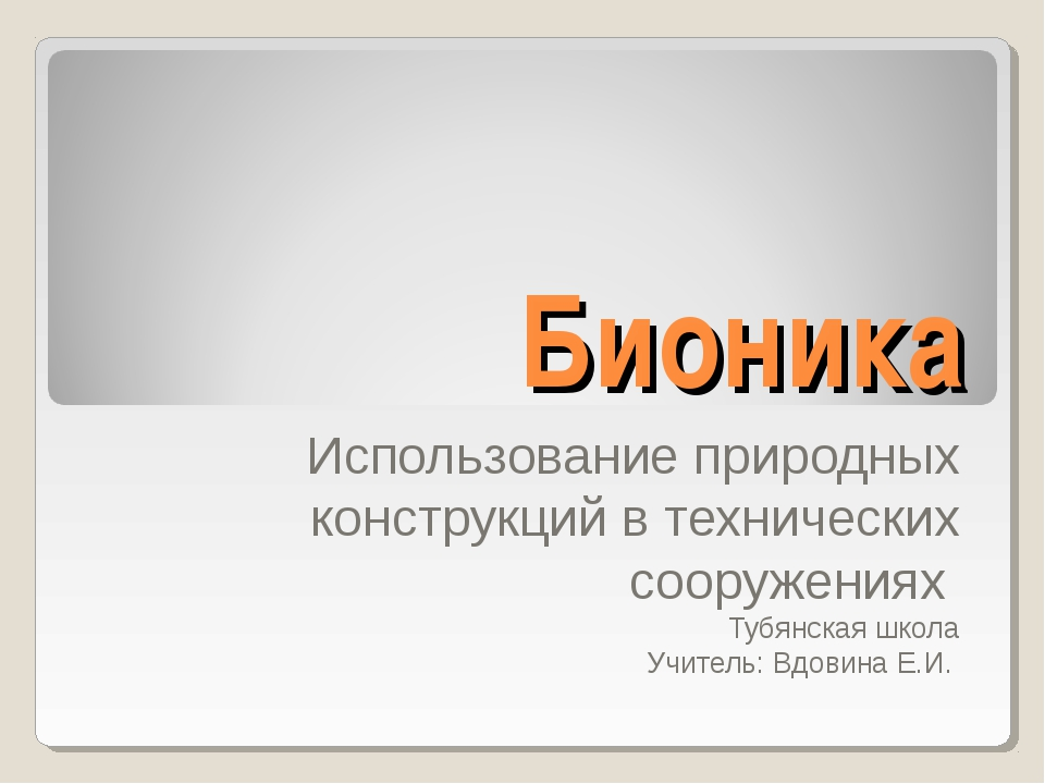 Бионика Использование природных конструкций в технических сооружениях Тубянск...