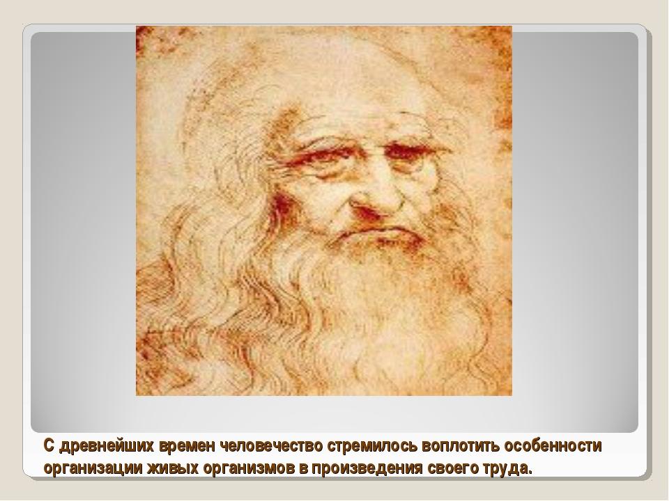 С древнейших времен человечество стремилось воплотить особенности организации...