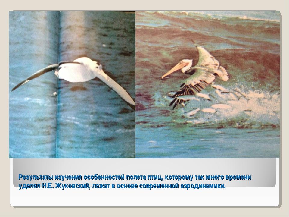 Результаты изучения особенностей полета птиц, которому так много времени удел...