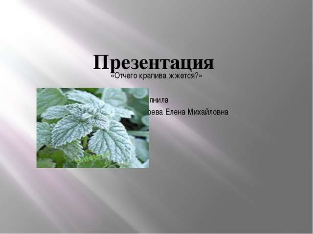 Презентация «Отчего крапива жжется?» Выполнила Зубарева Елена Михайловна
