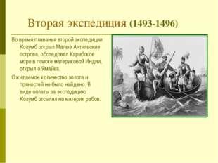 Вторая экспедиция (1493-1496) Во время плаванья второй экспедиции Колумб откр