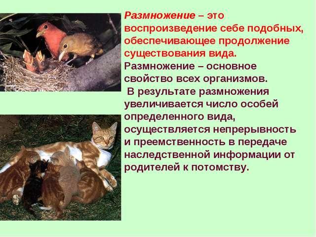 Размножение – это воспроизведение себе подобных, обеспечивающее продолжение с...