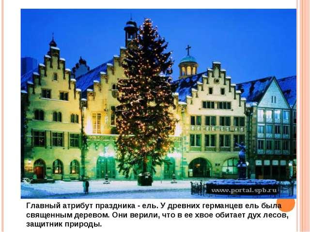 Главный атрибут праздника - ель. У древних германцев ель была священным дерев...