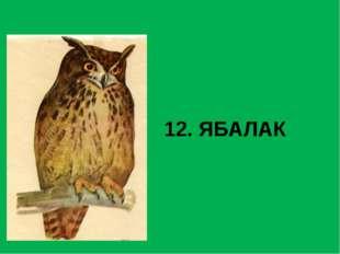 12. ЯБАЛАК