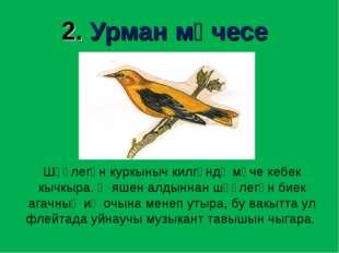 2. Урман мәчесе Шәүлегән куркыныч килгәндә мәче кебек кычкыра. Ә яшен алдынна