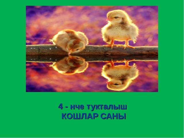 4 - нче тукталыш КОШЛАР САНЫ