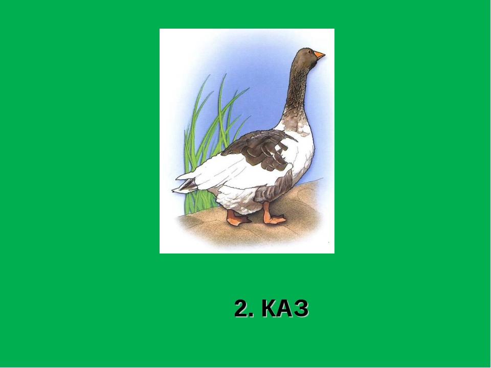 2. КАЗ