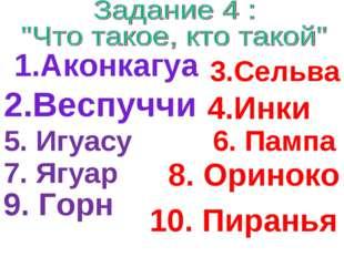 8. Ориноко 1.Аконкагуа 2.Веспуччи 3.Сельва 4.Инки 5. Игуасу 6. Пампа 7. Ягуар