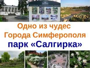 Одно из чудес Города Симферополя парк «Салгирка»
