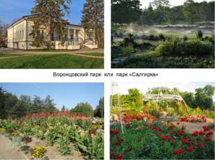 Воронцовский парк или парк «Салгирка»