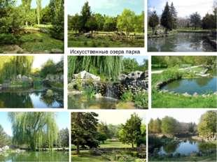 Искусственные озера парка