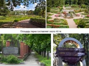 Площадь парка составляет около 40 га.