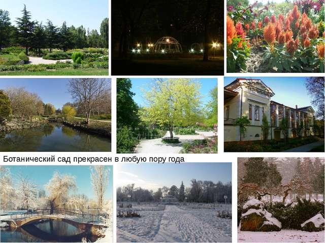 Ботанический сад прекрасен в любую пору года