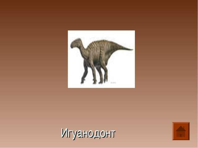 Игуанодонт
