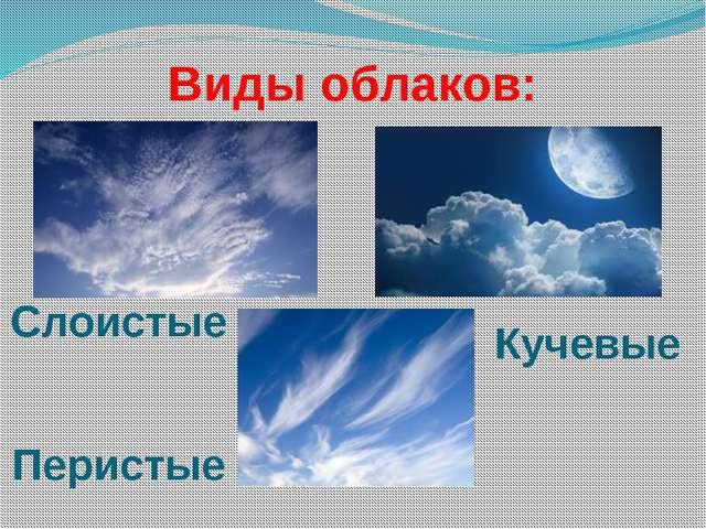 Виды облаков: Слоистые Перистые Кучевые