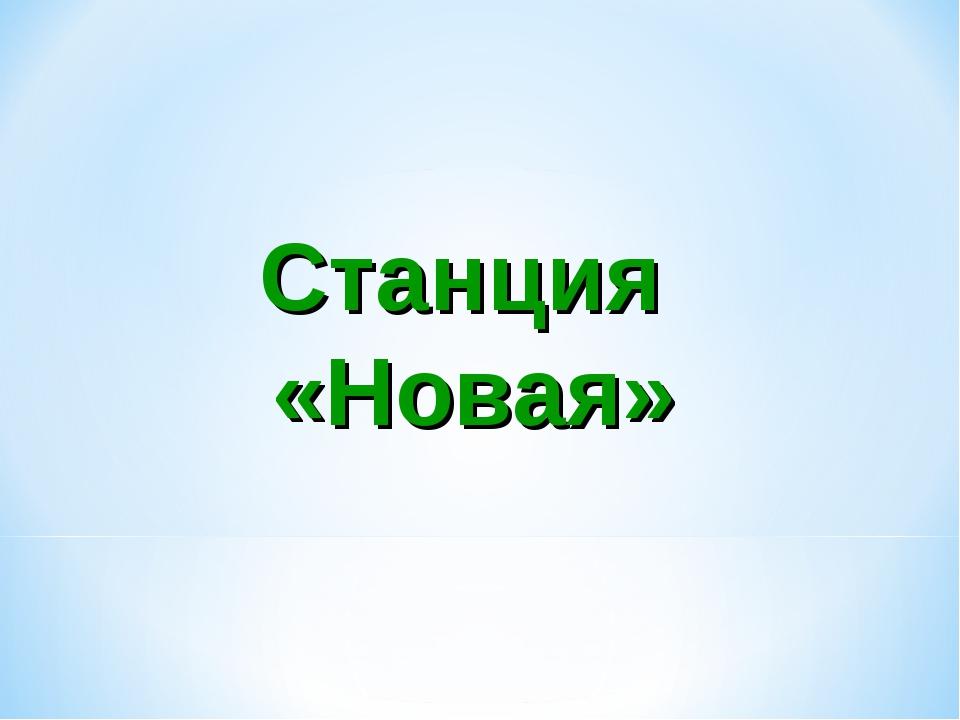 Станция «Новая»