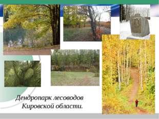 Дендропарк лесоводов Кировской области.