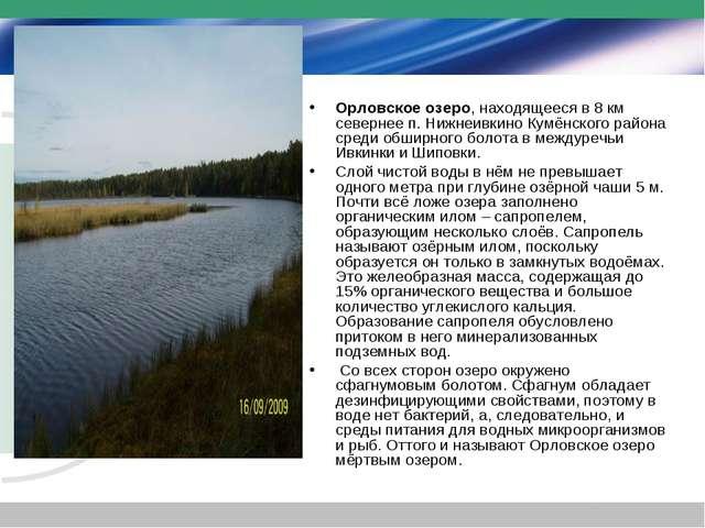 Орловское озеро, находящееся в 8 км севернее п. Нижнеивкино Кумёнского района...