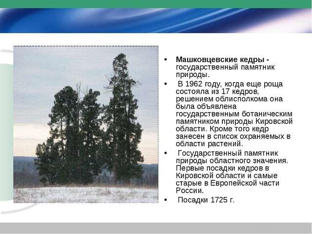 Машковцевские кедры - государственный памятник природы. В 1962 году, когда ещ...
