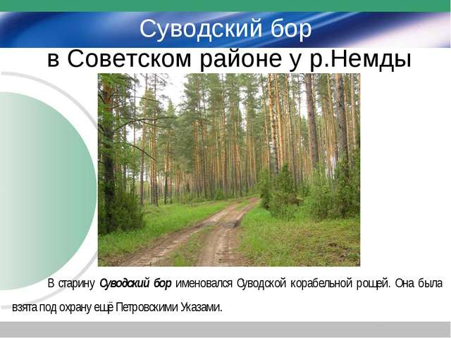 Суводский бор в Советском районе у р.Немды