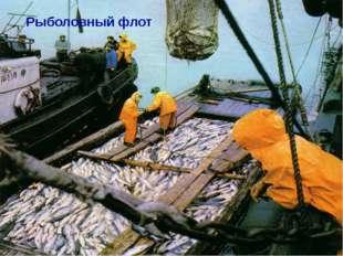 Рыболовный флот