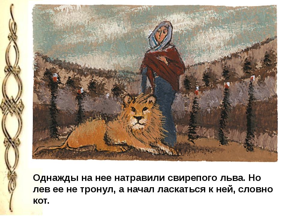 Однажды на нее натравили свирепого льва. Но лев ее не тронул, а начал ласкат...