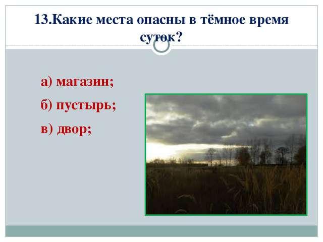 13.Какие места опасны в тёмное время суток? а) магазин; б) пустырь; в) двор;