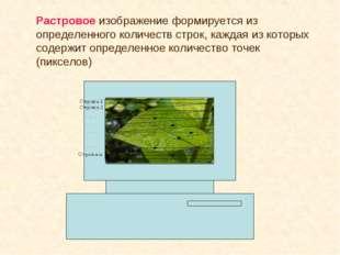 Растровое изображение формируется из определенного количеств строк, каждая из