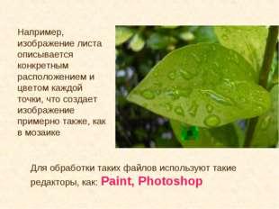 Например, изображение листа описывается конкретным расположением и цветом каж