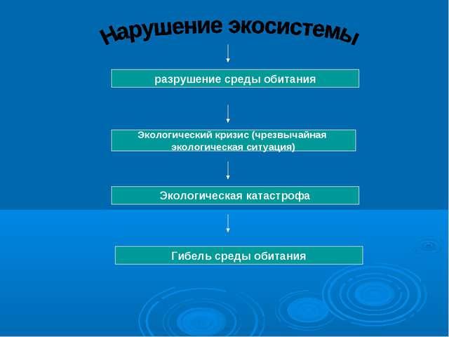 Обж 8 Класс Нарушение Экологического Равновесия Презентация