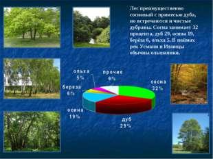 Лес преимущественно сосновый с примесью дуба, но встречаются и чистые дубравы