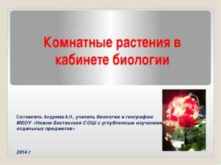 Комнатные растения в кабинете биологии Составитель: Андреева А.Н., учитель би