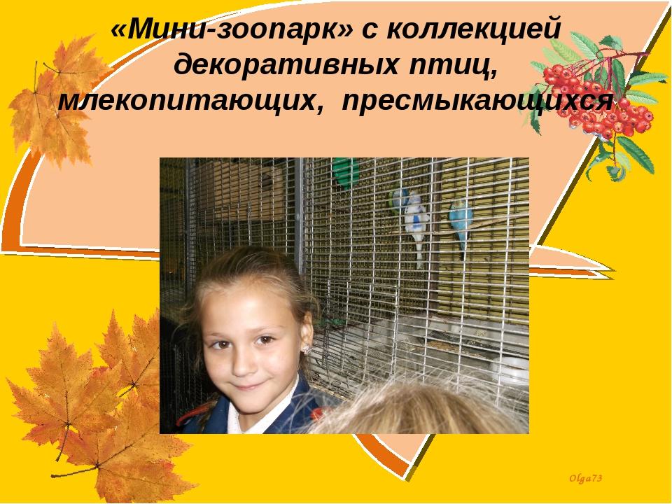 «Мини-зоопарк» с коллекцией декоративных птиц, млекопитающих, пресмыкающихся...