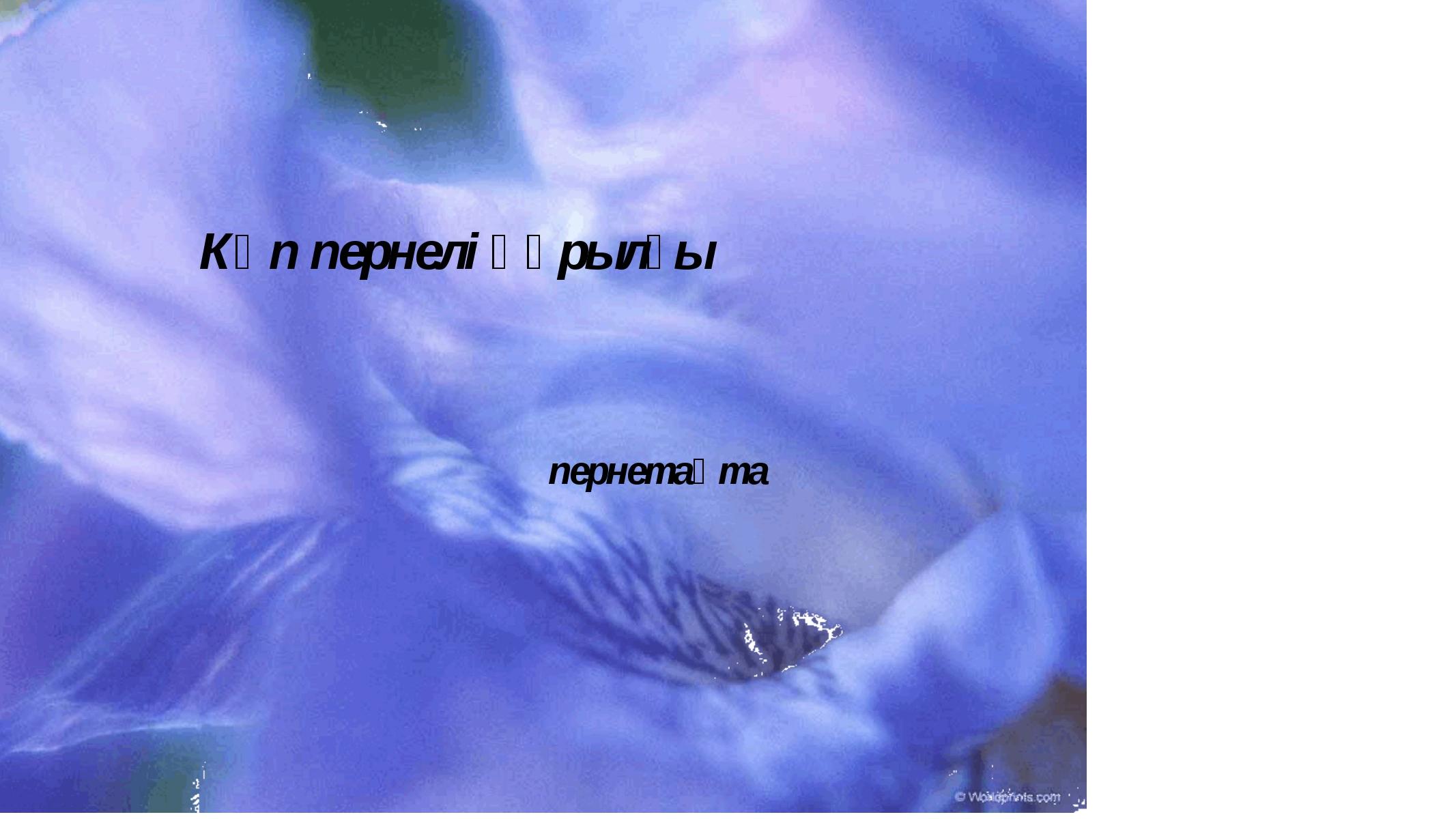 Көп пернелі құрылғы пернетақта