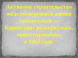 Активное строительство железнодорожной линии Архангельск — Карпогоры разверну