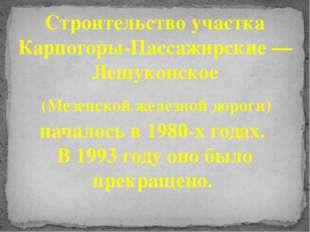 Строительство участка Карпогоры-Пассажирские — Лешуконское (Мезенской железно