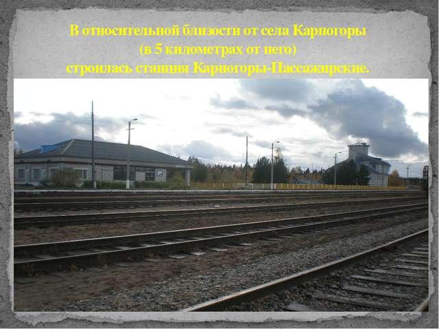 В относительной близости от села Карпогоры (в 5 километрах от него) строилась...