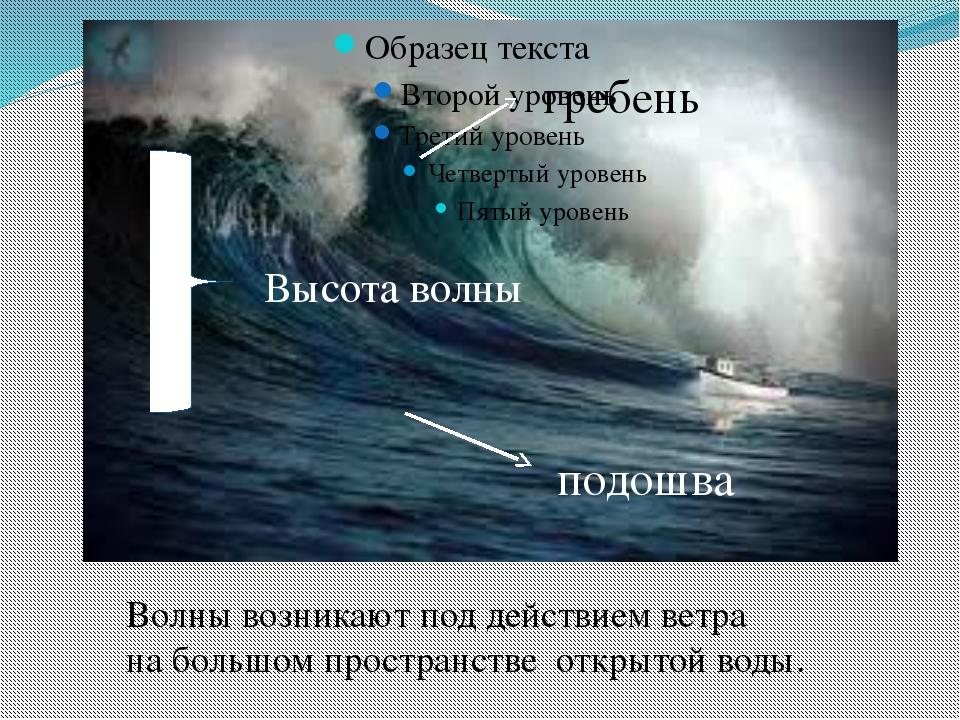подошва гребень Высота волны Волны возникают под действием ветра на большом...