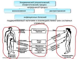 поддерживаемый наличием и взаимодействием трех составных элементов Эпидемичес