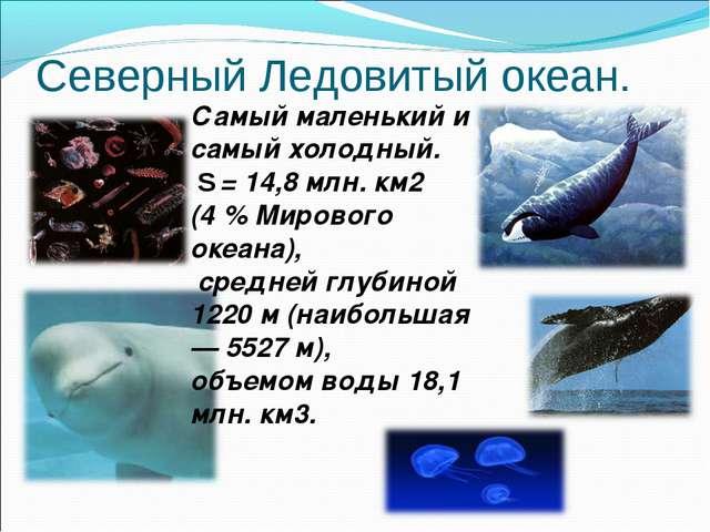 Северный Ледовитый океан. Самый маленький и самый холодный. S = 14,8 млн. км2...