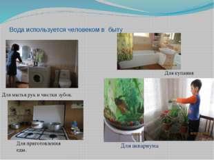 Вода используется человеком в быту Для мытья рук и чистки зубов. Для аквариум