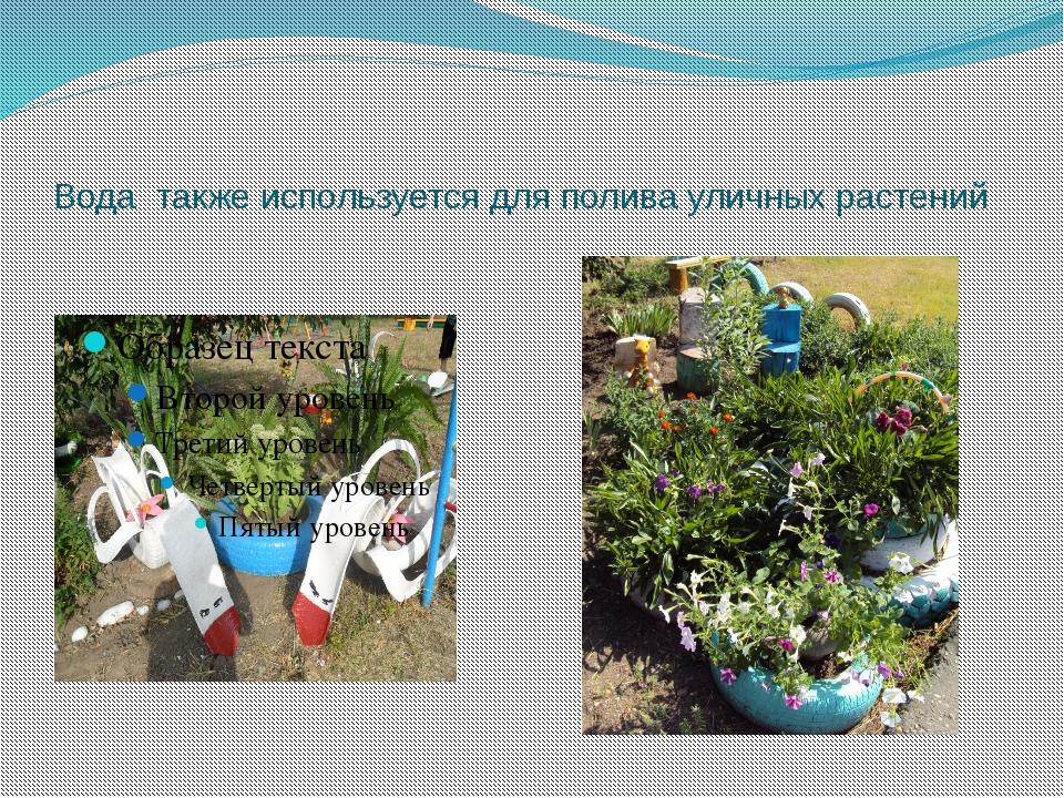 Вода также используется для полива уличных растений