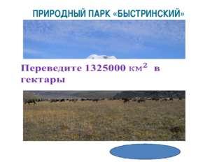 132500000 га ПРИРОДНЫЙ ПАРК «БЫСТРИНСКИЙ»