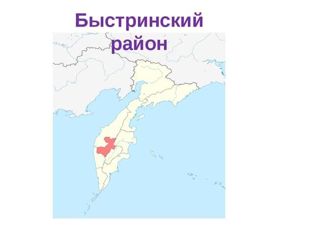 Быстринский район