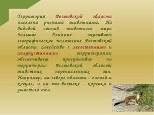 Территория Ростовской области населена разными животными. На видовой состав ж