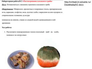 http://virtkab14.edusite.ru/DswMedia/lr2.docx