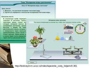 http://biolicey2vrn.ucoz.ru/index/isparenie_vody_listjami/0-361