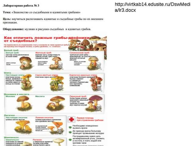 http://virtkab14.edusite.ru/DswMedia/lr3.docx