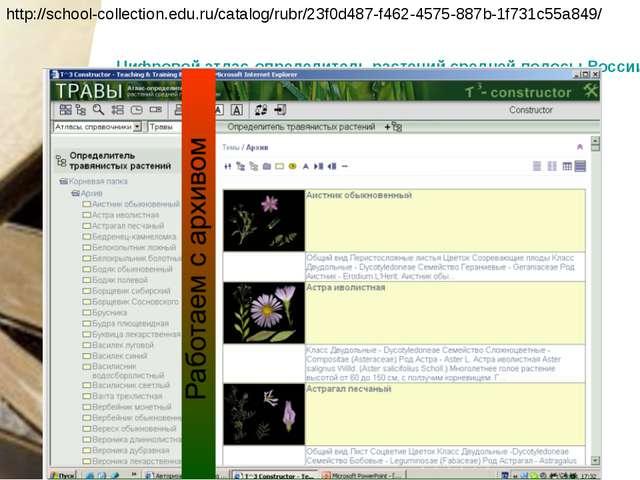 http://school-collection.edu.ru/catalog/rubr/23f0d487-f462-4575-887b-1f731c55...