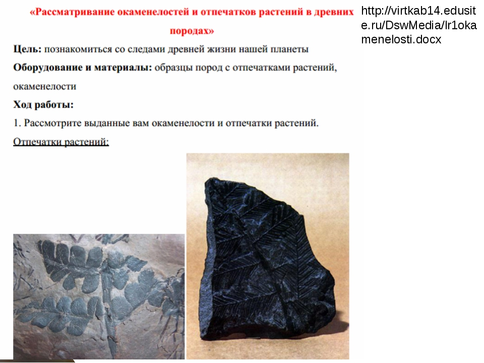http://virtkab14.edusite.ru/DswMedia/lr1okamenelosti.docx